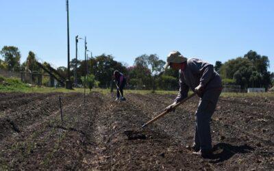 DIEZ FAMILIAS COMENZARON EL SEGUNDO PROYECTO DE HUERTA AGROECOLÓGICA EN CRESPO
