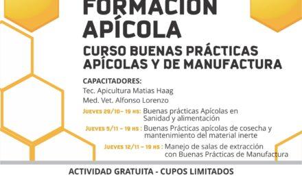 CURSOS VIRTUALES DE BUENAS PRÁCTICAS APÍCOLAS