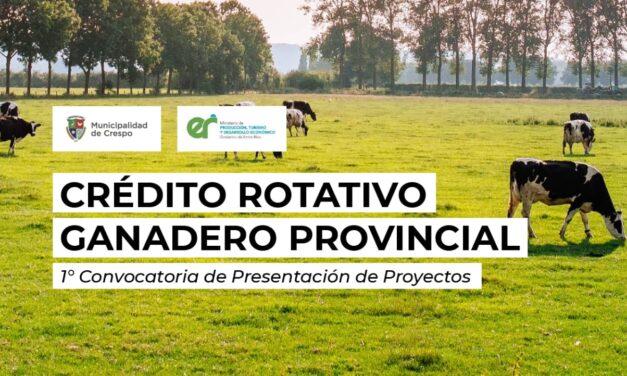 CONVOCATORIA PARA LA PRESENTACIÓN DE PROYECTOS DE FINANCIAMIENTO DESTINADOS AL SECTOR PRODUCTIVO GANADERO