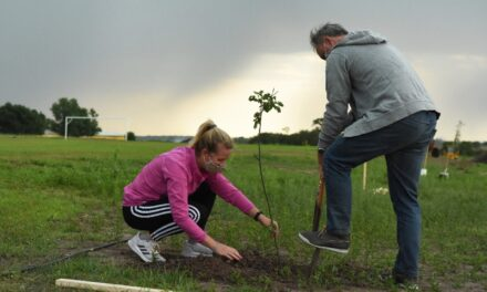 PLAN DE FORESTACIÓN EN EL TIRO FEDERAL, PARA BENEFICIAR LA ECOLOGÍA Y CUIDAR EL AMBIENTE