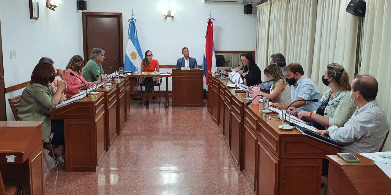 CONCEJO DELIBERANTE: RESUMEN LEGISLATIVO 2020