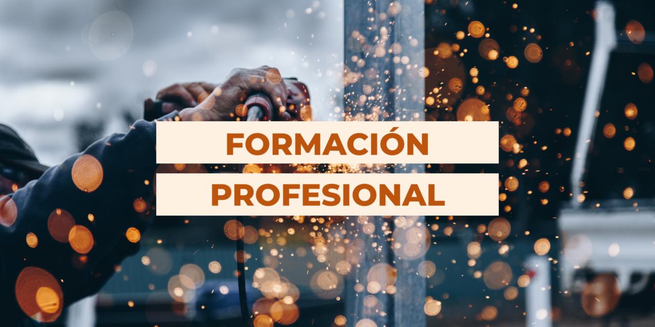 DOS NUEVAS PROPUESTAS DE FORMACIÓN PROFESIONAL